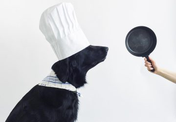 homecooking for your dog