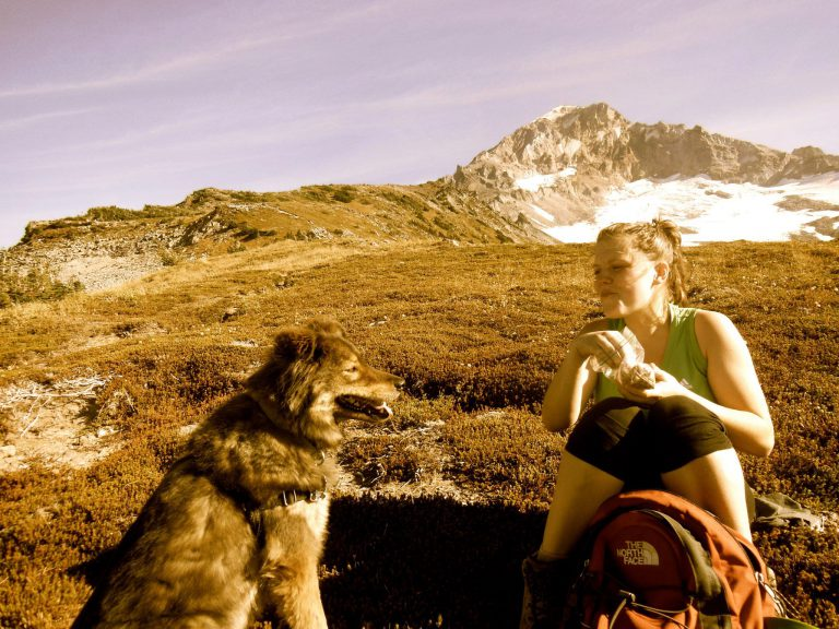 reuben, a chow mix dog, and owner sitting at the base of mt. hood in oregon
