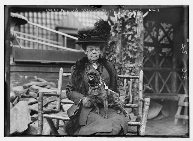 Mrs. E.L. Pulsifer and her French Bulldog, Maurice, in 1905