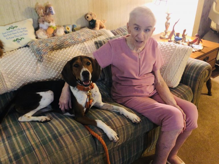 a happy-looking hound sits on a couch with an elderly individual as part of a therapy dog visit